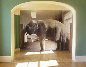 Charming The Elephant In The Kibakiu0027s Living Room. A Jeremiad From Onyango Oloo In  The Montreal Wilderness Part 28